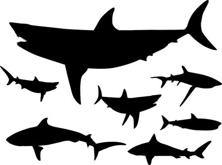 Original Illustration: Sharks in the water Silhouette AI8 compatible illustration