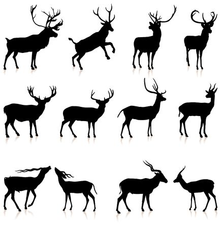 Deer Silhouette Collection Original Vector Illustration