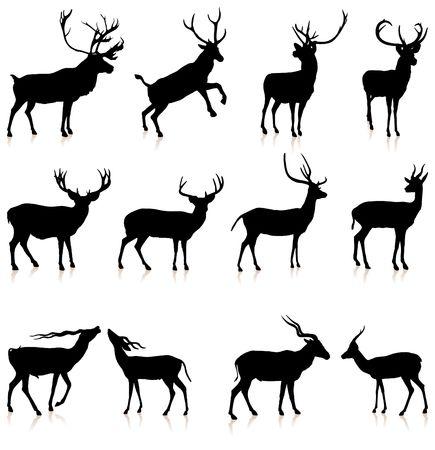 deers: Deer Silhouette Collection Original Vector Illustration
