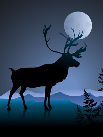 Deer on night background with mmon Original Vector Illustration illustration