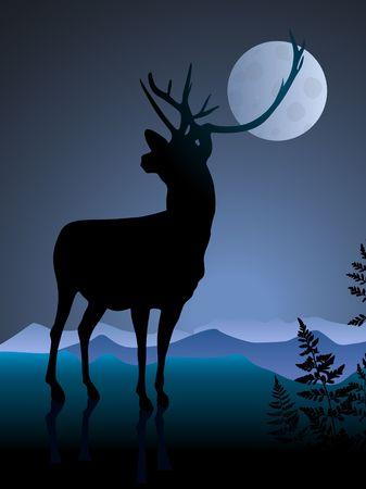 Cervo sullo sfondo di notte con mmonIllustrazione vettoriale originale Archivio Fotografico - 6441390
