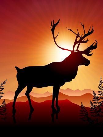 Deer ib Sunset Background Original Vector Illustration illustration