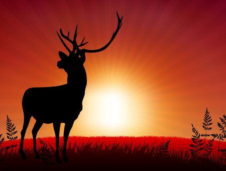 Deer ib Sunset BackgroundOriginal Vector Illustration Фото со стока - 6441515