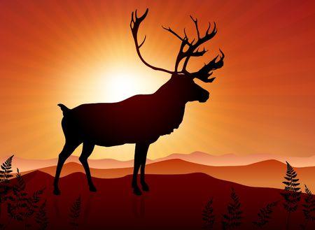 Deer ib Sunset Background Original Vector Illustration