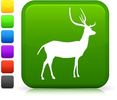 Deer Icon on Internet Button Original Vector Illustration illustration