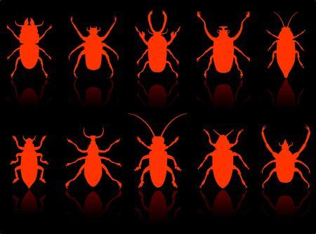 昆虫セット オリジナルのベクター イラスト 6 色バージョンで収録 写真素材