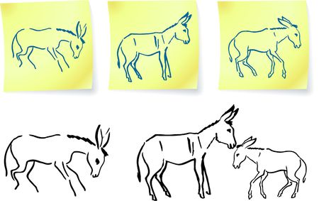 donkey family  on post it notes original vector illustration 6 color versions included illustration