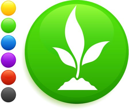 plant icon on round internet button original vector illustration 6 color versions included