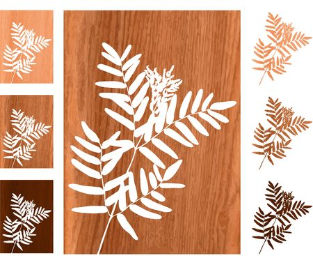 Original  Illustration: Wild fern on wooden background AI8 compatible  Stock Photo
