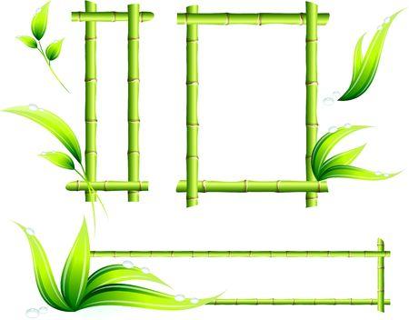 green environment: Bamboo Frames Original  Illustration Green Nature Concept