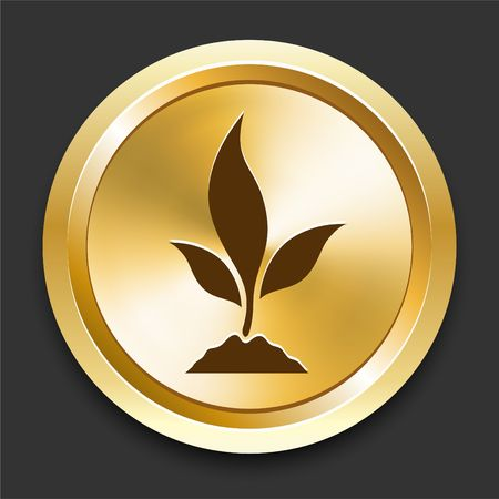 Plant Tree on Golden Internet Button Original Illustration
