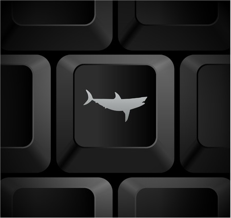 Shark Icon on Computer Keyboard Original Illustration illustration