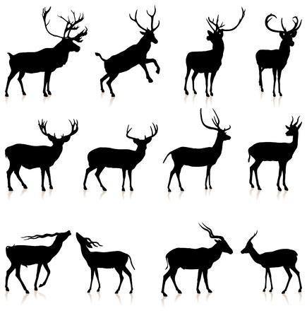 Deer Silhouette Collection Illustrazione vettoriale originale Archivio Fotografico - 20477705