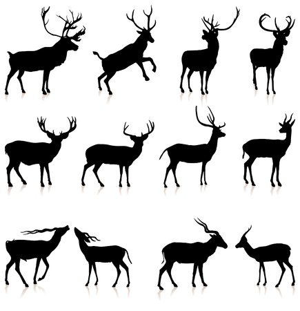 shiny black: Deer Silhouette Collection Original Vector Illustration