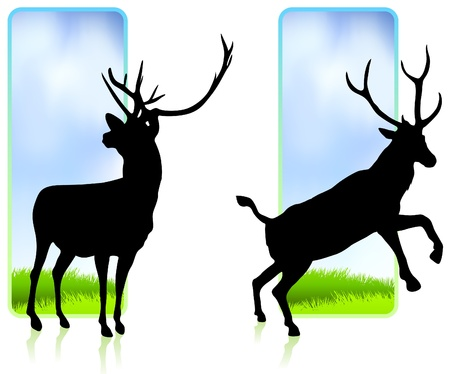 Deer with Nature Banners Original Vector Illustration