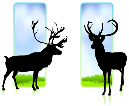 Deer with Nature Banners Original Vector Illustration Vector