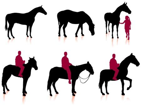 Horse and Jockey Silhouette SetOriginal Vector IllustrationAnimals Ideal for Sport Concept