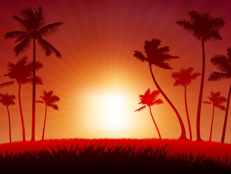 Original Vector Illustration  Sunset background Ideal for Tropical Idea Vector