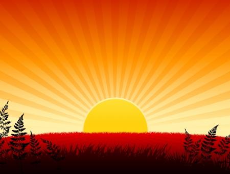 Sunset background Original Vector Illustration  Sunset background Ideal for Tropical Idea