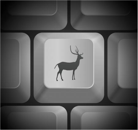 컴퓨터 키보드 원래 그림에 사슴 아이콘 일러스트