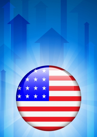 United States Flag Icon on Internet Button  Vector