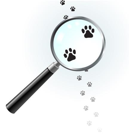closer: Paw footprints under magnifying glass Original Vector Illustration Magnifying Glass Closer