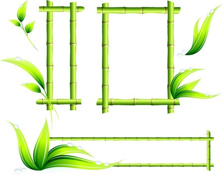 Bamboe Frames Originele Vector Illustratie Groene Natuur Concept Stock Illustratie