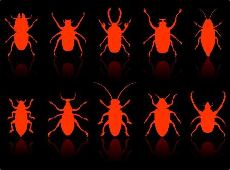 昆虫セット オリジナルのベクター イラスト 6 色バージョンで収録  イラスト・ベクター素材