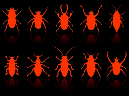 Insects Set original vector illustration 6 color versions included Çizim