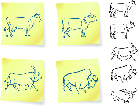 texas longhorn cattle: cow buffalo and bison on post it notes original vector illustration 6 color versions included