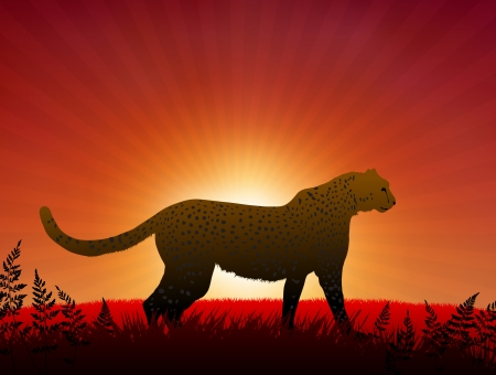 Cheetah on Sunset Background Original Vector Illustration Animals on Sunset Ideal for Wildlife Nature Concepts Vector