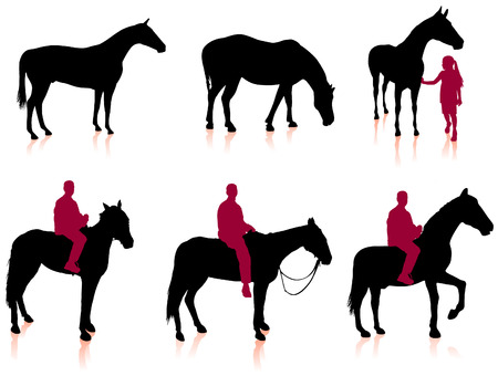 clydesdale: Horse and Jockey Silhouette Set Original Vector Illustration Animals Ideal for Sport Concept Illustration