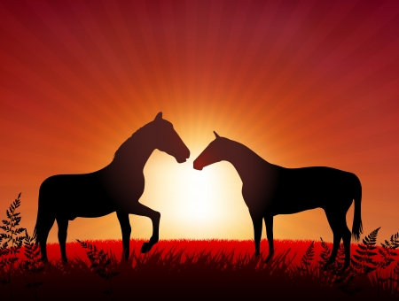 Horses on Sunset Background Original Vector Illustration Animals on Sunset Ideal for Wildlife Nature Concepts