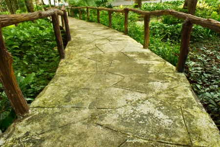 The Concrete garden walkways in the Park
