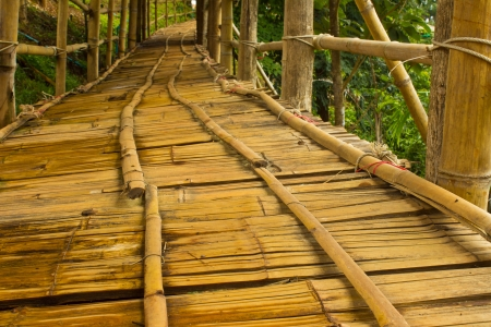 Bamboo Bridge on the park
