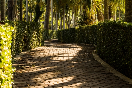 Pathway in park  travel background Stock Photo