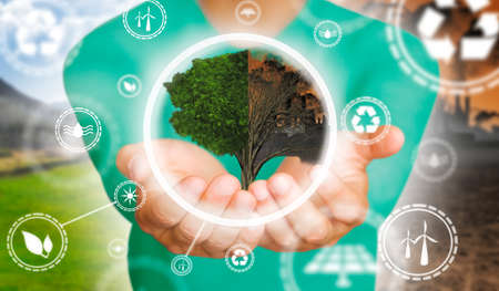Man's hands holding a half-living, half-dry tree with renewable energy symbol. Environmental biodiversity in ecosystem concept. Backdrop as a concept of energy efficiency. The power of green energy. Concept of renewable energies