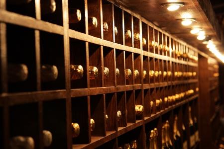 어두운 와인 저장고에 병이 든 선반 스톡 콘텐츠