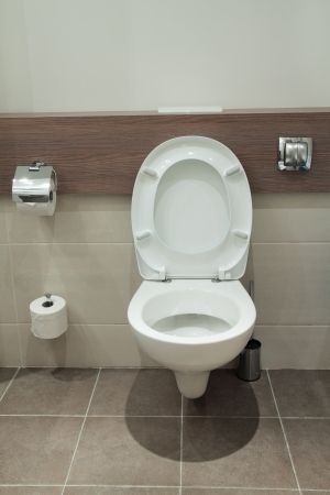 Home flush toilet (toilet bowl, paper) photo