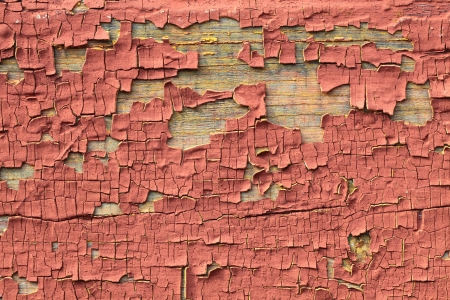 Red structure of the old cracked paint photo