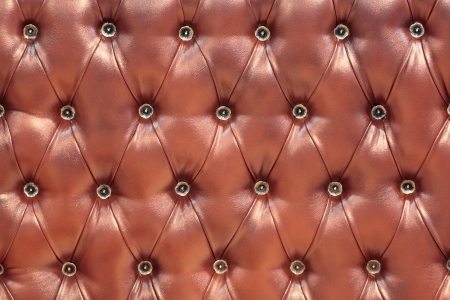 Leather upholstery of a magnificent sofa Stock Photo - 22064390