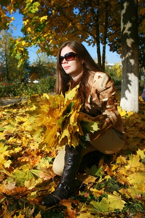 armful: The woman of 27 years squats with an armful of maple leaves against autumn wood
