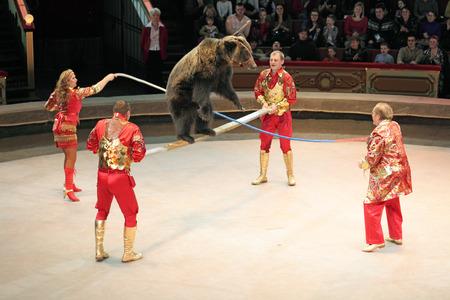 """모스크바, 러시아 - 년 11 월 27 일 : """"황금 털""""의 프레 젠 테이션. 모스크바, 러시아 년 11 월 27 일에 모스크바 서커스의 곰 훈련"""
