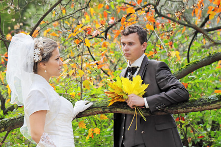 marriageable: Portrait newly wedded walk in the autumn park Stock Photo