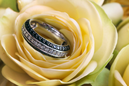 brilliants: Ring from white gold with transparent and black brilliants in a bud of a yellow rose Stock Photo