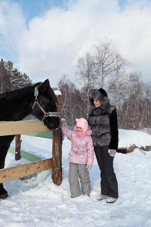 The little girl with her mother for a walk in the park strokes a horse photo