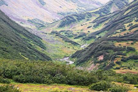 streamlet: Far east, Russia, Kamchatka, mountain stream in the gorge Stock Photo