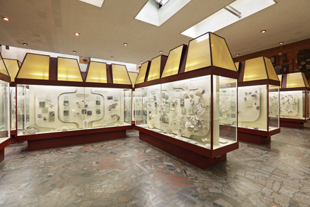 Russia, interior of Moscow Paleontological Museum, exposition with the remains of ancient sea animals  Editorial