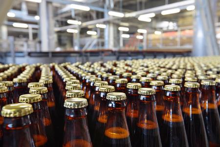 feldolgozás: Az élelmiszeripar. Üveg sör palack mozgó szállítószalagon Stock fotó