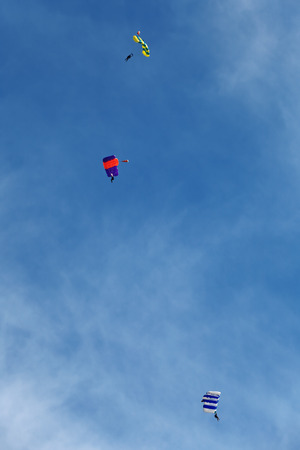 parachutists:  Three paratroopers fly in the background of the blue sky